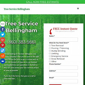 Tree Service is the Choice for the Best Cheap Tree